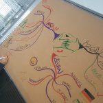 Viessmann Firması İş Hayatında Zihin Haritaları